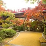 弥彦公園『もみじ谷』紅葉情報2018!見頃、ライトアップの時間は?日本庭園と見る紅葉に感動!
