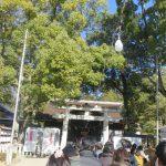 武田神社の初詣してきました~!三箇日以外の混雑状況は?駐車場や屋台も!