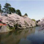 古城公園の高岡桜まつり2018開催日はいつ?花見の見頃は?