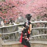 糸川桜まつり2018!開催日は?桜の見ごろは?熱海梅園梅まつり同時に見れるスポット!?