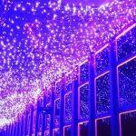 東京タワー天の川イルミネーション2018!七夕デートならココ!期間と時間は?混雑状況も知りたい!