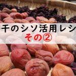 梅干しのシソ活用法レシピ!もやしと混ぜちゃえナムルでさっぱり食べる!